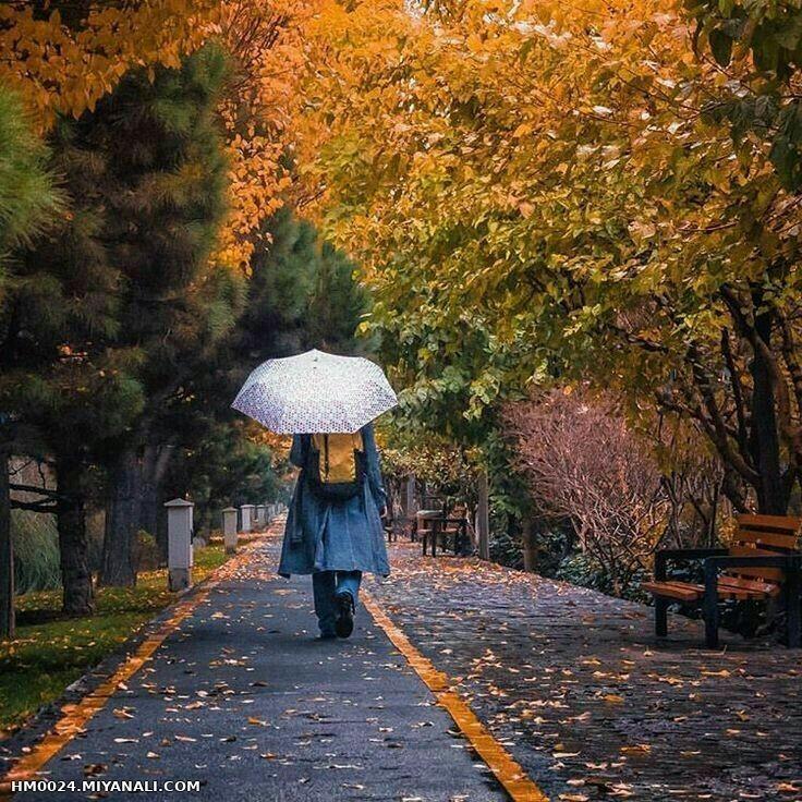 دلتنگی پاییزی