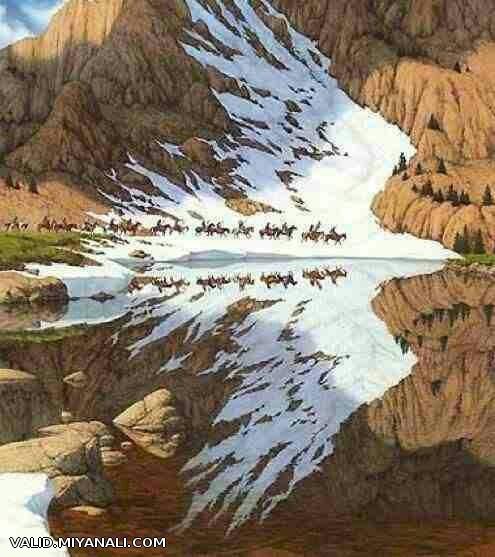 بازتاب تصویر کوه ها در آب دریاچه، عقابی در حال پرواز را پدید آورده