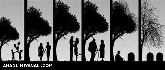 به نظرتون چند درصد همبازی های دوران کودکی عاشق هم میشن و به هم می رسن؟!