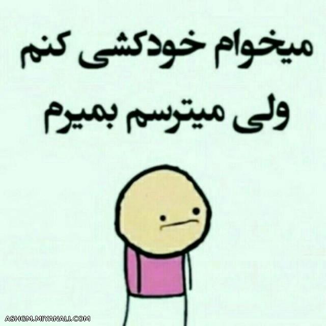 دوستان
