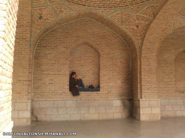 عکسی که خودم در بوستان خاقانی تبریز شکار کردم!