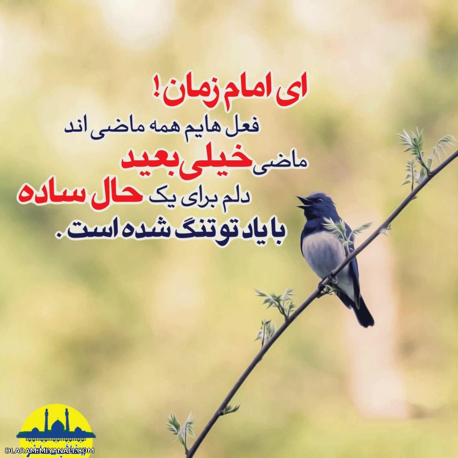اسلام علیک یا صاحب الزمان (عج)