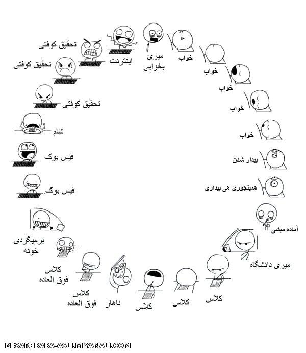 چرخه دانشجویی (: