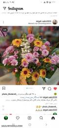گل به همه