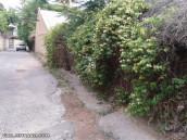 حیاط خوابگاه ما