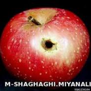 کرم سیب