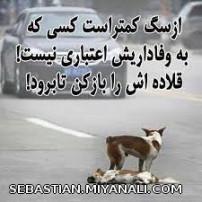 از سگ کمتر است کسی که...