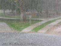 بارش تگرگ