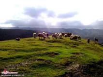عکاسی حرفه ای از طبیعت قشنگ عباس آباد دره شهر