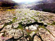 عکس سنگ فرش طبیعت خدایی