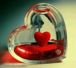 قلب مان