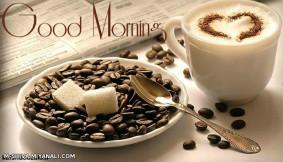 صبح همگی بخیر وشادی