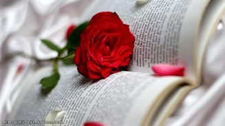 خواهش عشق ...